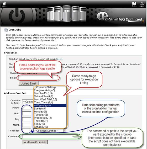 cPanel Cron Jobs menu fields
