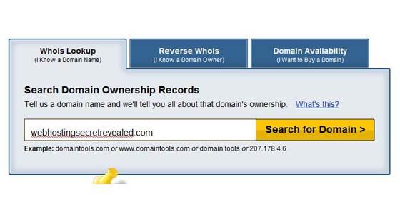 Domain Tools screenshot