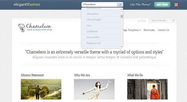 WordPress Demo Theme