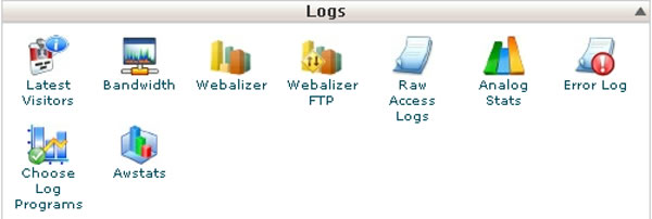 cPanel Logs Section