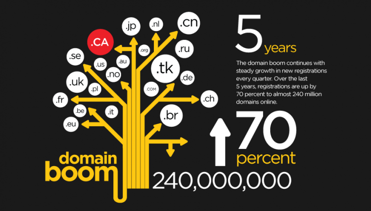 Domain boom infographic