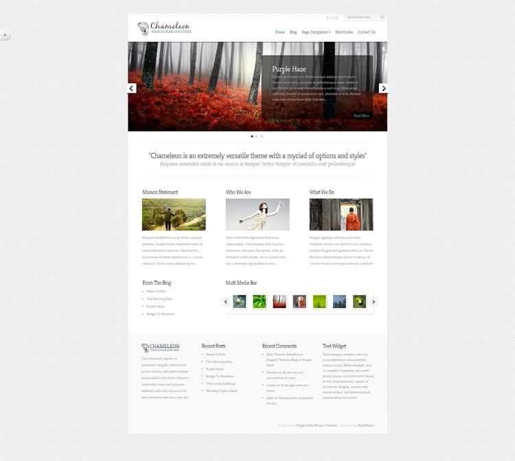 Tema Elegan Tema WordPress: Bunglon