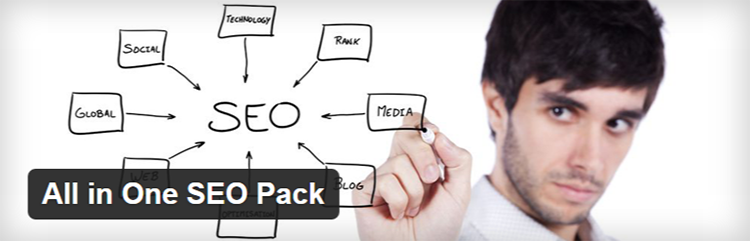 WordPress › Support » All in One SEO Pack
