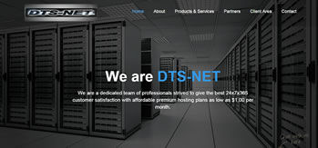 DTS-网