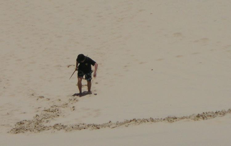 Sandboarding at Moreton Island, Brisbane (long way to climb up after the slide!), 2013.