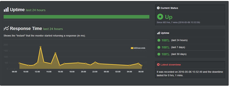 Test site uptime scores - no downtime for the past 30 days.