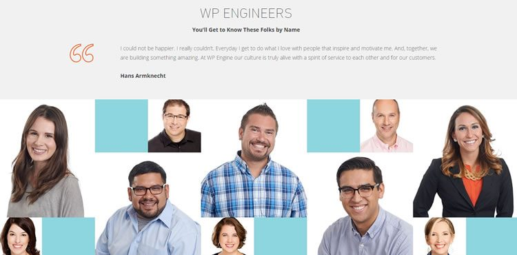 WP Engineers: Engineers and WordPress experts in WP Engine support team.