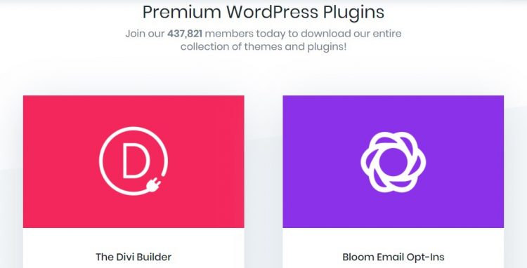 Premium WordPress Theme Sites to Help Make Your Business Stand Out