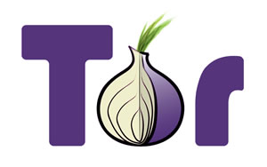 How to Access the Dark Web: Browsing Dark Web, TOR Browser