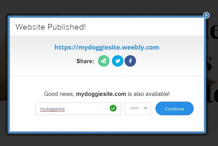 Screenshot of our published Weebly website