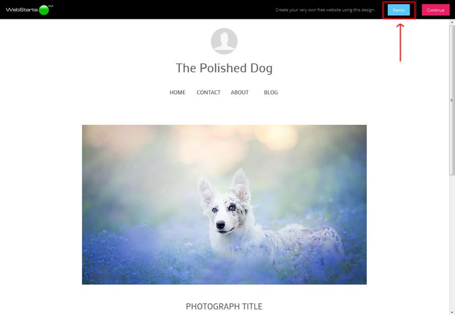 Build your website using WebStarts AI