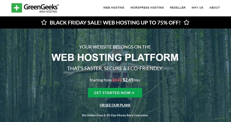 Ofertas del Black Friday de GreenGeeks 2020