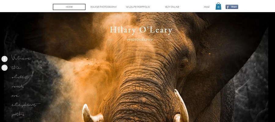Photography website build with Wix - Hilary O'Leary