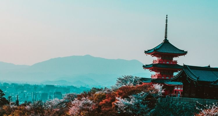 Which web hosting is best for Japanese website?