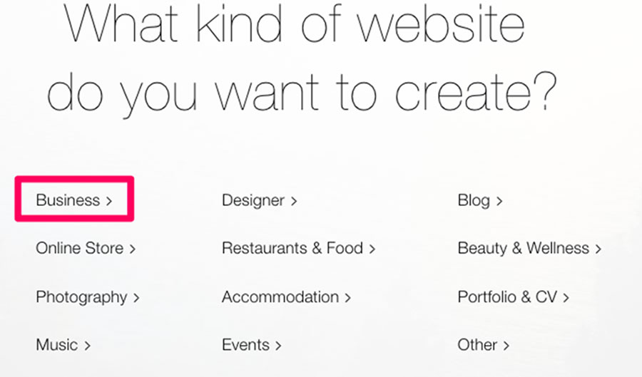 For this walkthrough too, we'll choose the 'Business' website category.