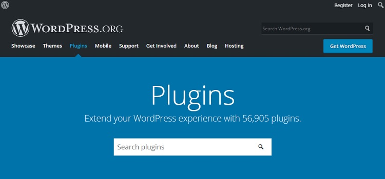 Cost of plugins and website functions development